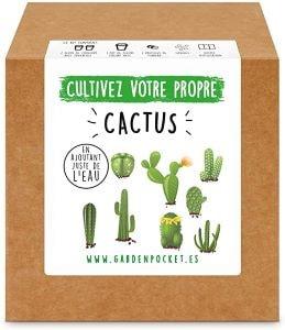 kit cactus - Beaux Cadeaux