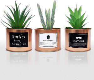 lot de 3 plantes cactus artificielle