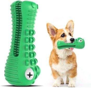 jouet très résistant pour chien en forme de tête de crocodile